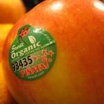 Meyve Etiketi